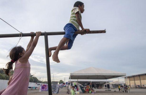 thumbnail de UNICEF lança no Brasil sistema inovador de gestão de casos de proteção da criança em ações humanitárias